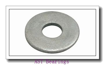 AST AST800 3025 plain bearings