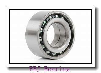 FBJ 2205K self aligning ball bearings