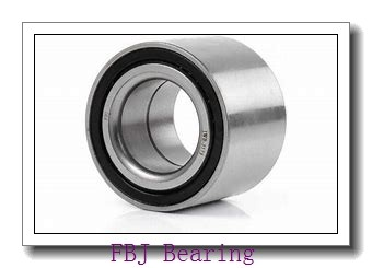 FBJ GEZ95ES plain bearings