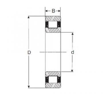 SIGMA N 2206 cylindrical roller bearings