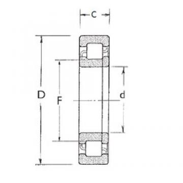 FBJ NUP2310 cylindrical roller bearings