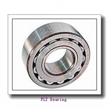FLT CBK-262 tapered roller bearings