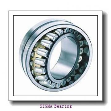 SIGMA N 209 cylindrical roller bearings